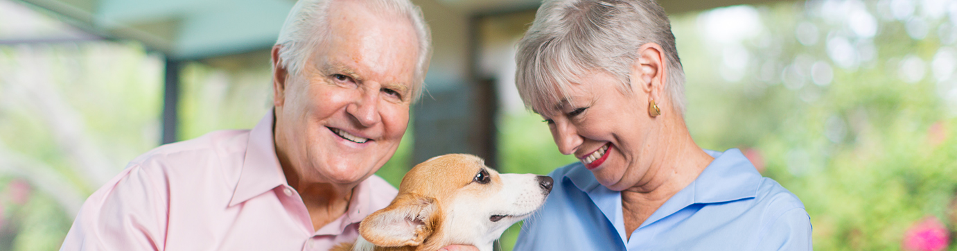 Photo of happy elderly couple and their dog.
